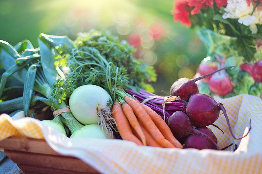 Gemüsekorb mit Karotten und Randen