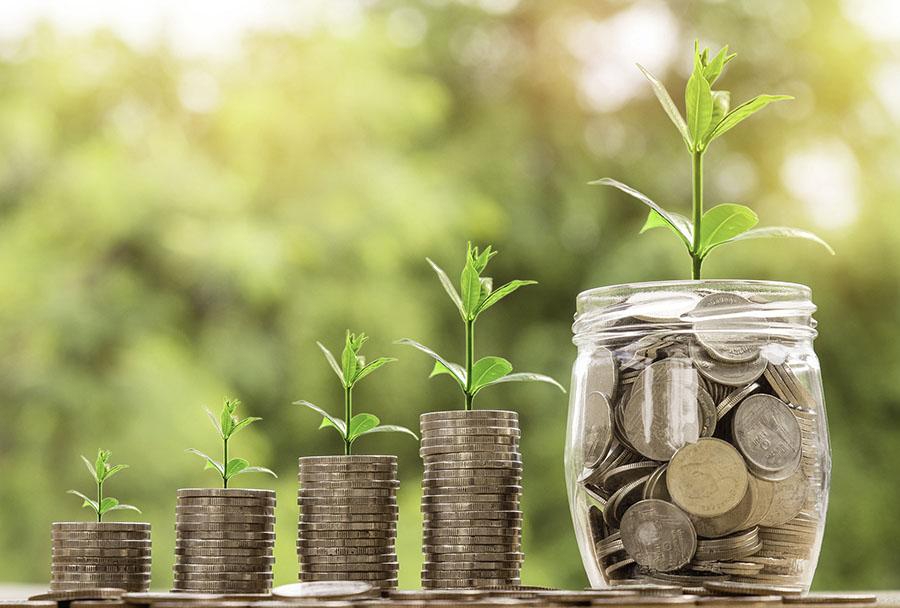 Pflanzen auf Geldstücken