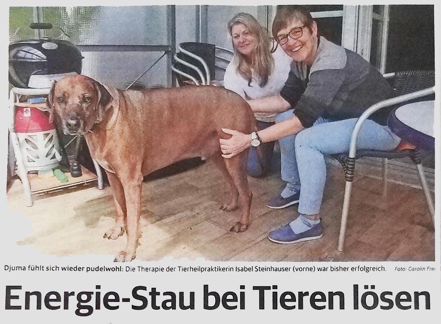 Lenzburger Bezirksanzeiger: Energiestau lösen